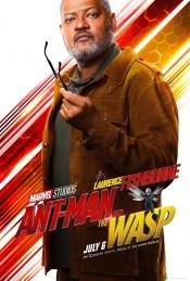 Picture of Ant-Man and the Wasp 46 / 57