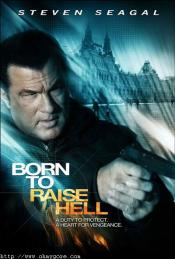 Picture of Born to Raise Hell 1 / 9