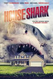 Picture of House Shark 2 / 4